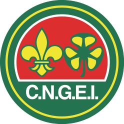CNGEI